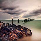 Bridport Tasmania by Angelika  Vogel