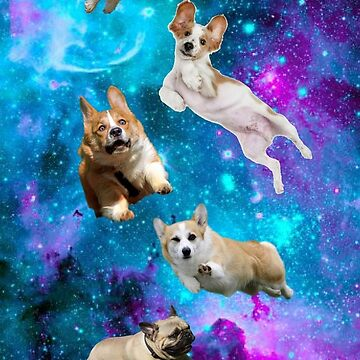 Dogs in Space!!! by DaniHoffmann