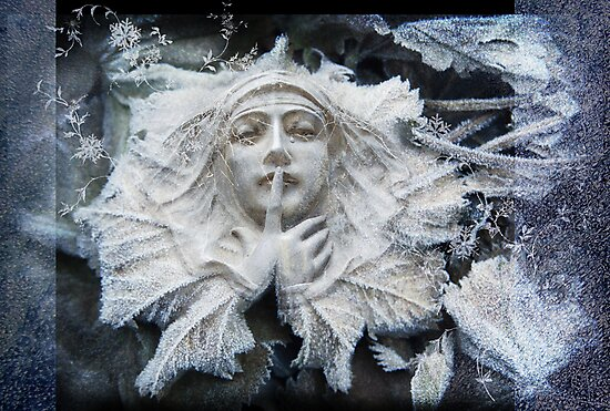 Nos Da Cariad by Aimee Stewart