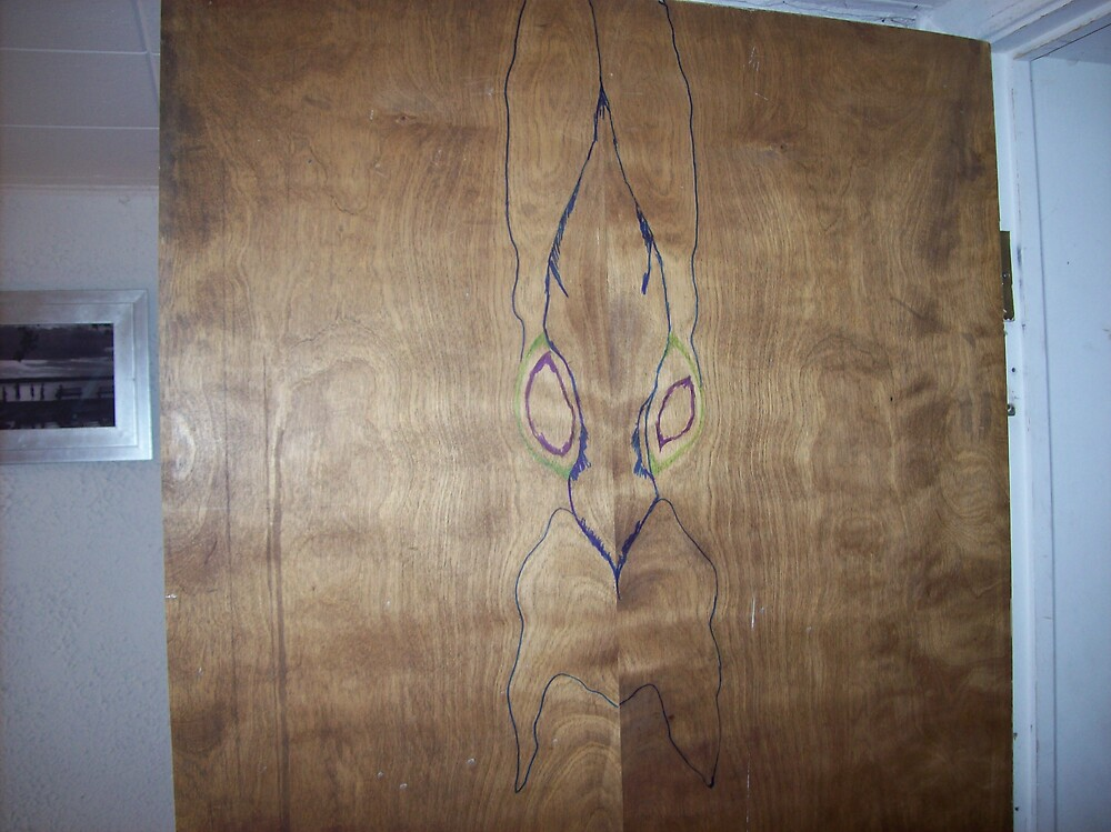 alien door wizard by ariyahjoseph
