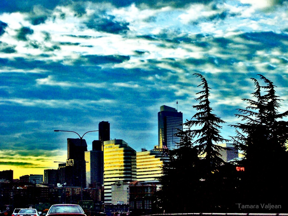 Seattle Sunrise Commute 4 by Tamara Valjean