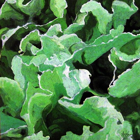 Spring Lettuce - still life oil painting by LindaAppleArt