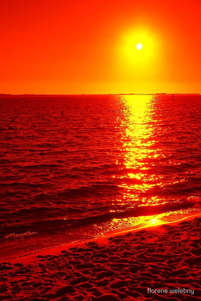Sun Burn by florene welebny