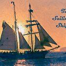 Tall Sailing Ships 2009 by NaturaLight