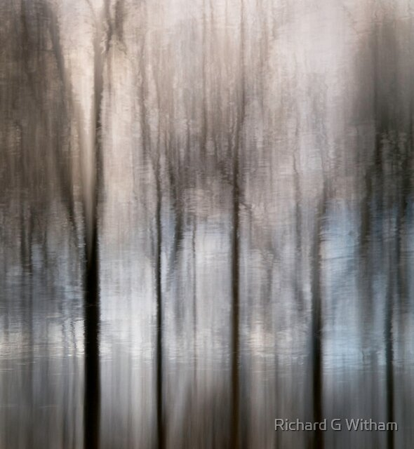 Trees Sigh by Richard G Witham