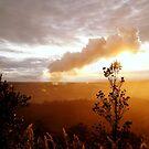 View Of Kilauea by Elizabeth  Lilja