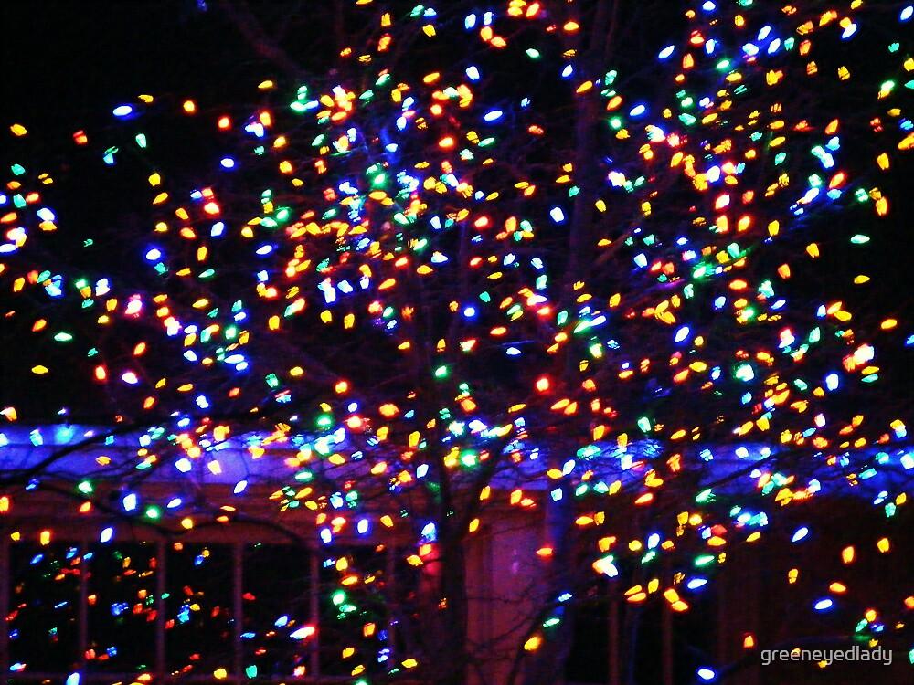december fireflies by greeneyedlady