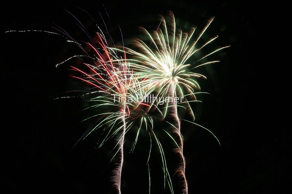 Fireworks by Tina Billhymer