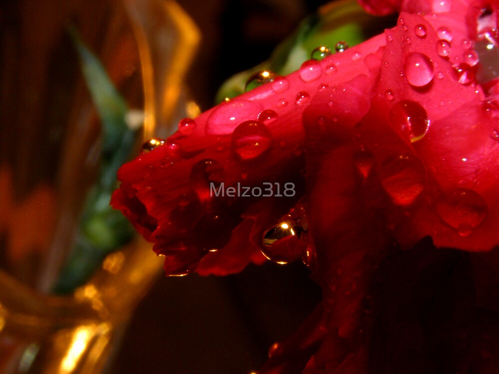 Red Drops by Melzo318