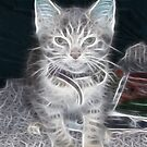 Fractilus..Kitty by judygal