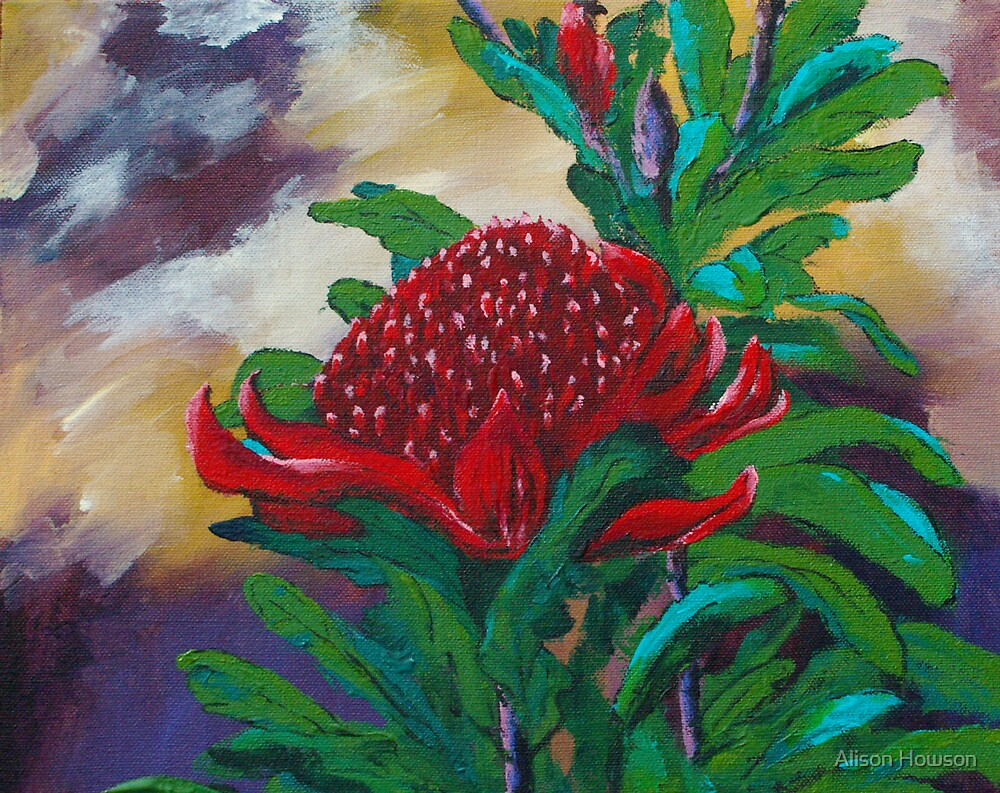 Waratah by Alison Howson