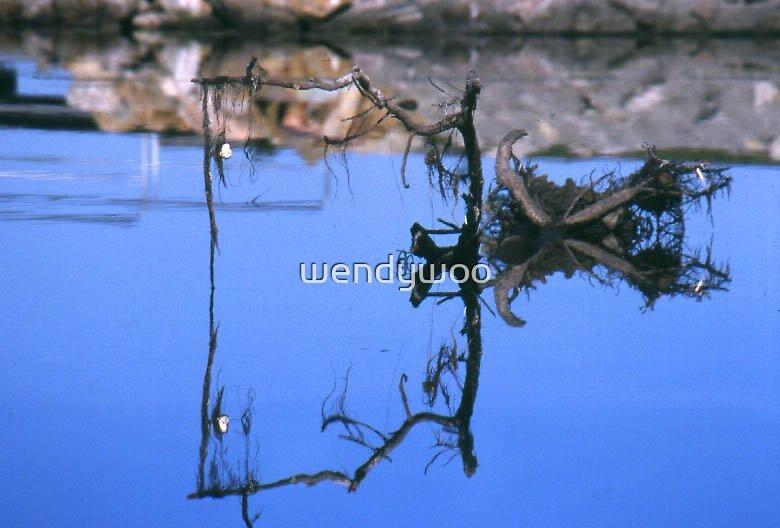 Calm waters by wendywoo