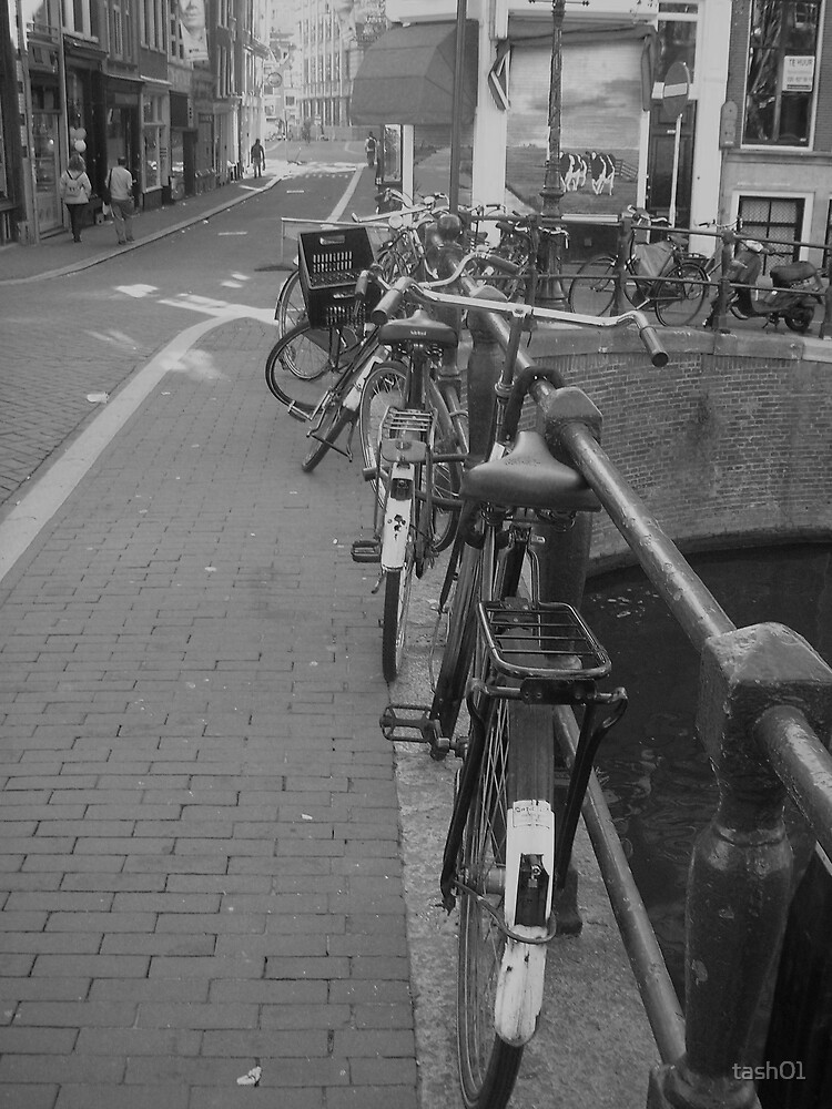 Amsterdam Bicycles by tash01