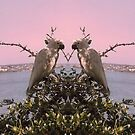 Love Birds by Storm Designs