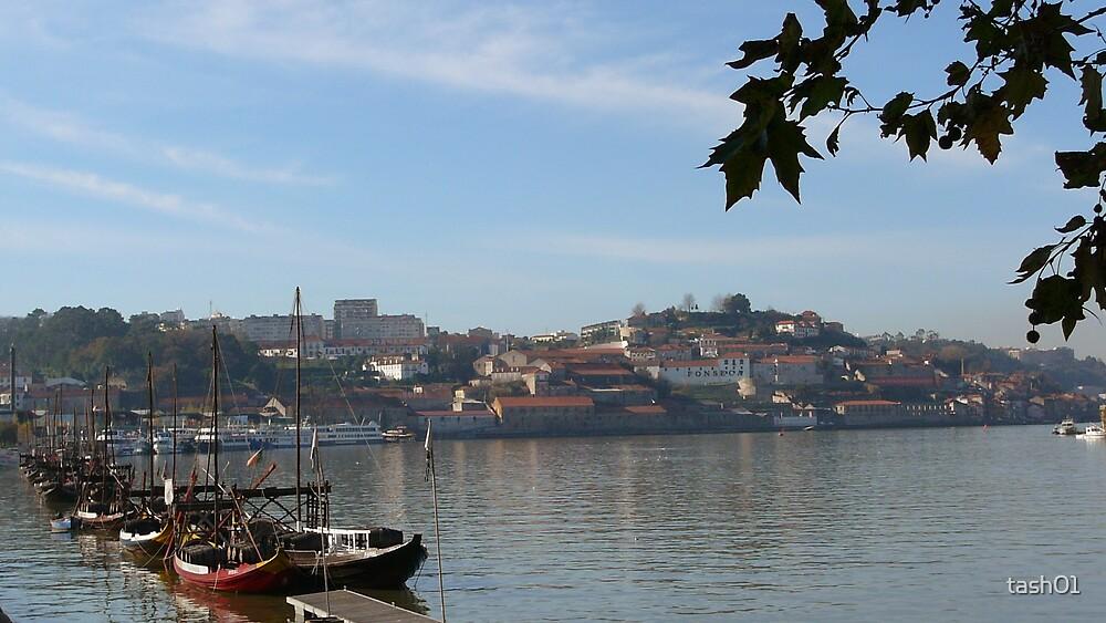 Porto, Portugal by tash01