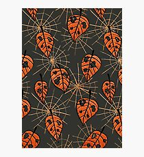 Orange Leaves With Holes And Spiderwebs Photographic Print