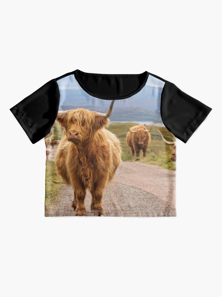 Alternate view of Highland Cow. Glen Garry. Kinloch Hourn. Scottish Highlands. Chiffon Top
