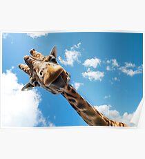 Hello Giraffe! Poster