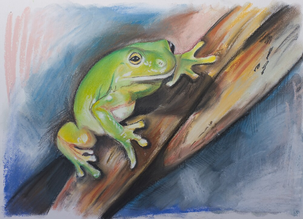 Tree Frog Study by Jacqui Coote