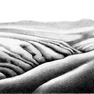 Folded Hills, Otago by Patricia Howitt