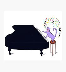 Keyboard Kitty on the baby grand  Photographic Print