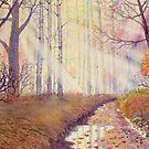 Autumn Memories by Glenn Marshall