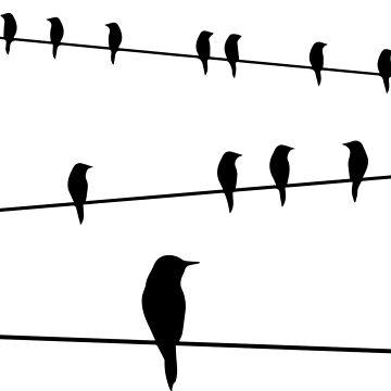 the birds by -KRAFTWERK