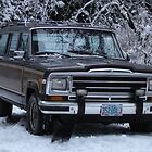 1987 Jeep Grand Wagoneer  by Greg Lester