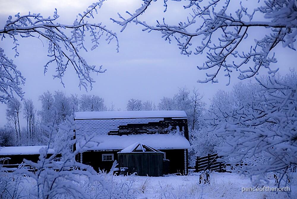 Winter Farm by peaceofthenorth