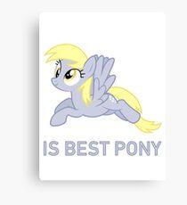 Derpy Is Best Pony - MLP FiM - Brony Canvas Print