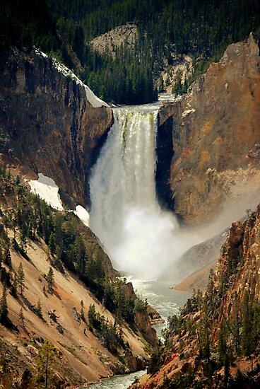 Lower Yellowstone Falls by Bob Moore