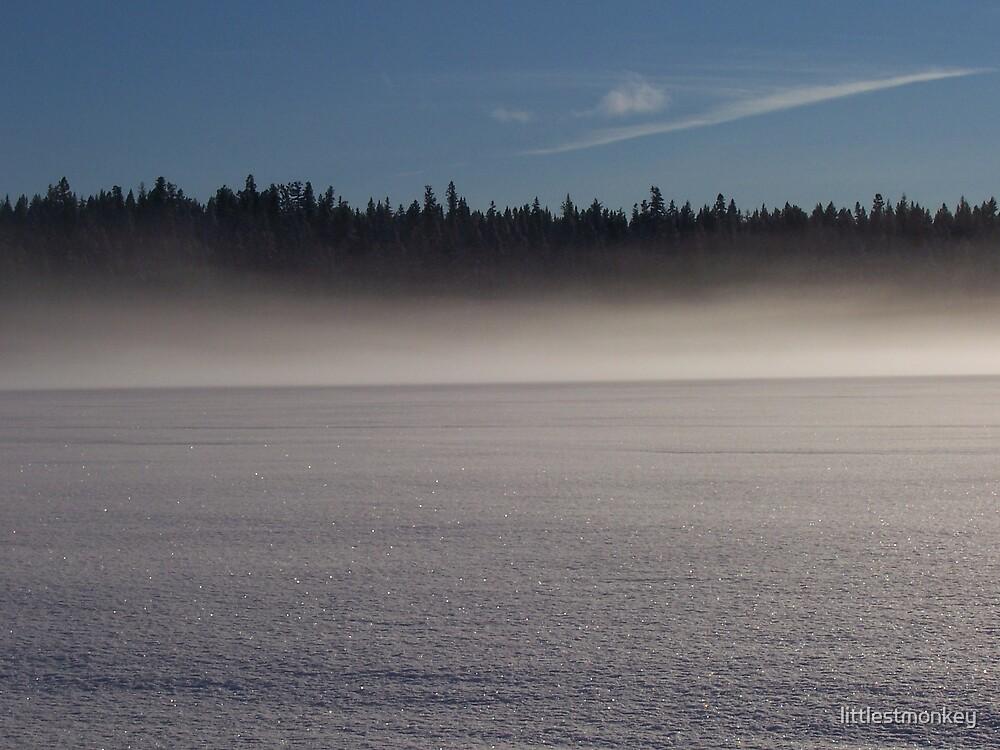 Frozen lake by littlestmonkey