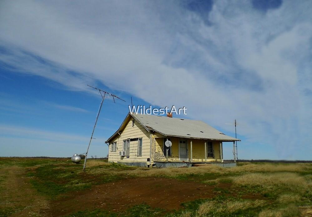 Little House On The Prairie by WildestArt