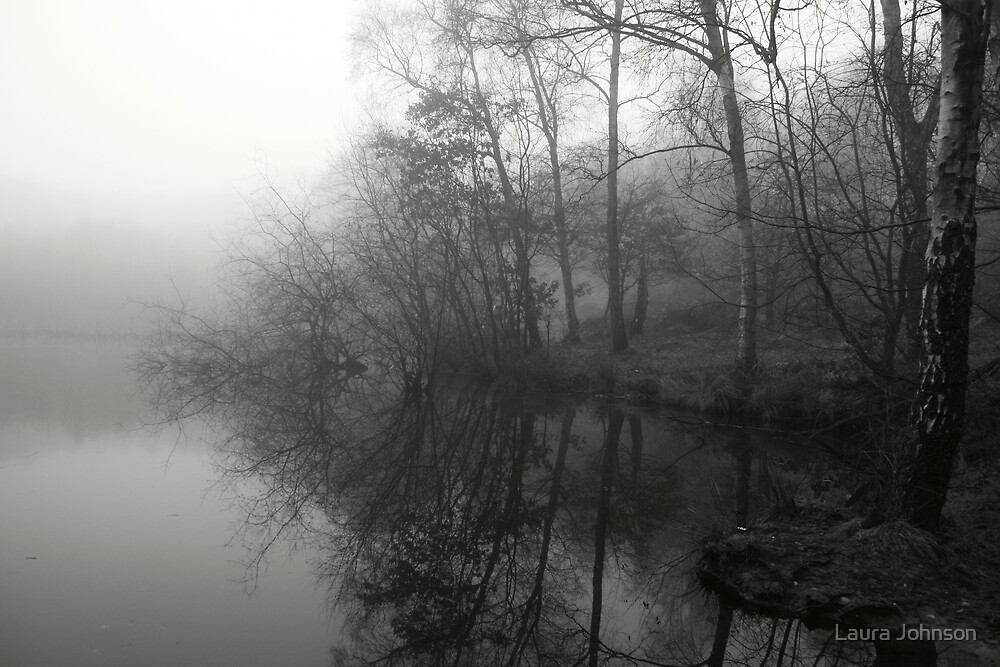 Foggy Mere Pool by Laura Johnson