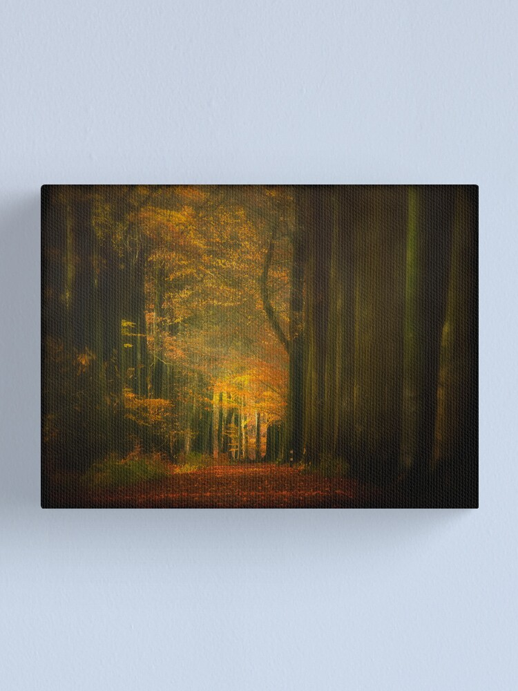 Alternate view of Misty light in woods  Canvas Print
