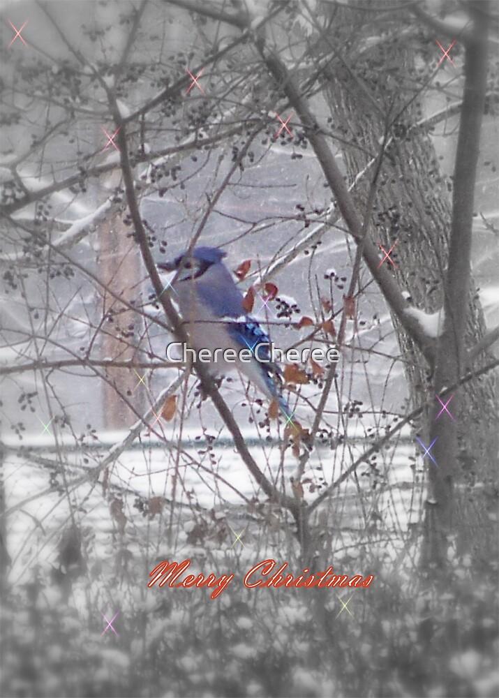 Blue Jay  by ChereeCheree