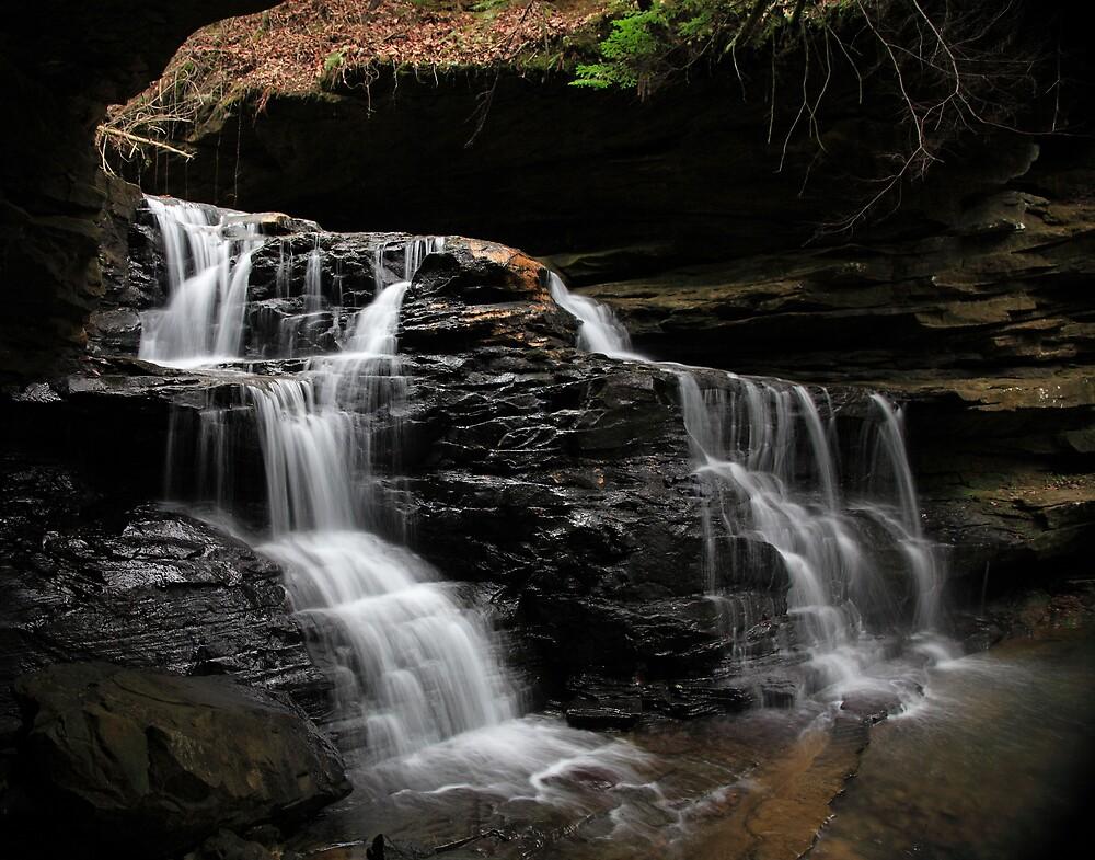 Mize Mill Falls  by Michael  Callahan