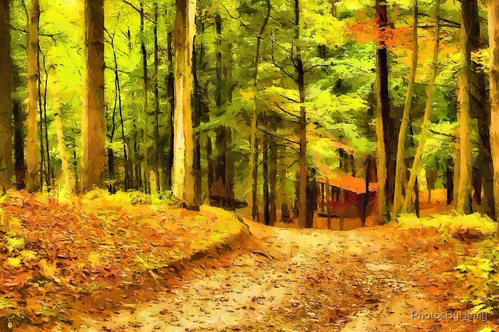 Autumn path II - painted by PhotosByHealy