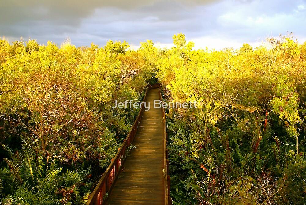 Golden Fall by Jeffery Bennett