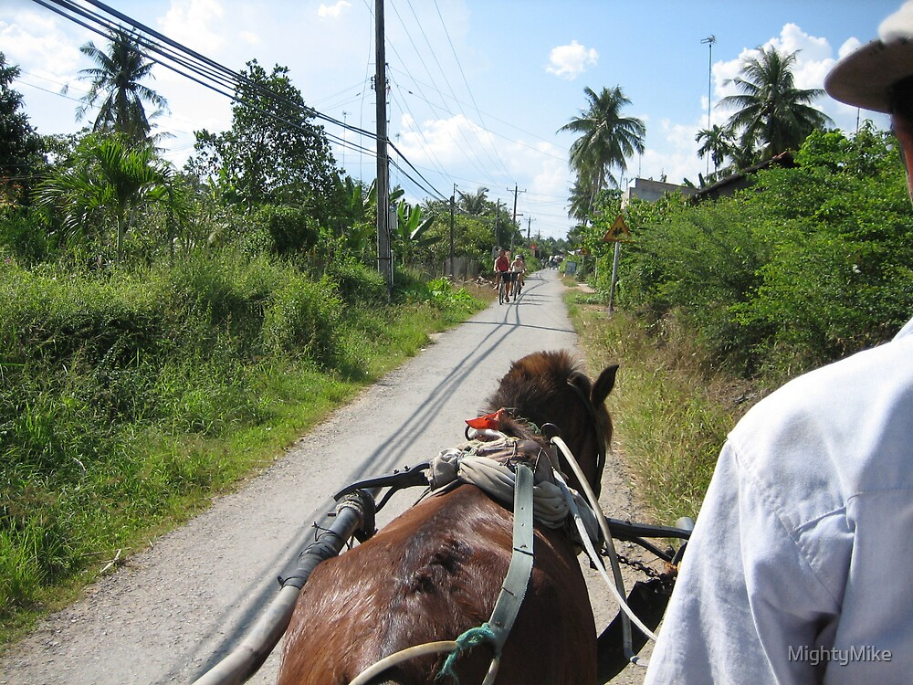 Horse Ride in Ho Chi Minh by MightyMike