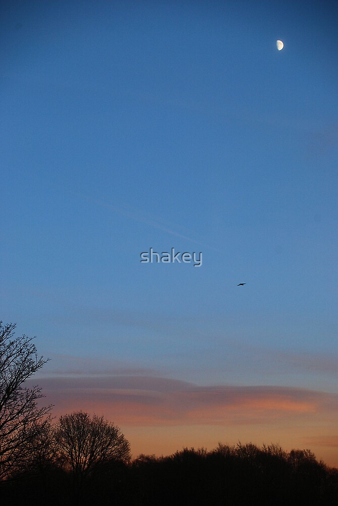 Half moon by shakey