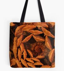 Bottom of a Pine Cone Tote Bag