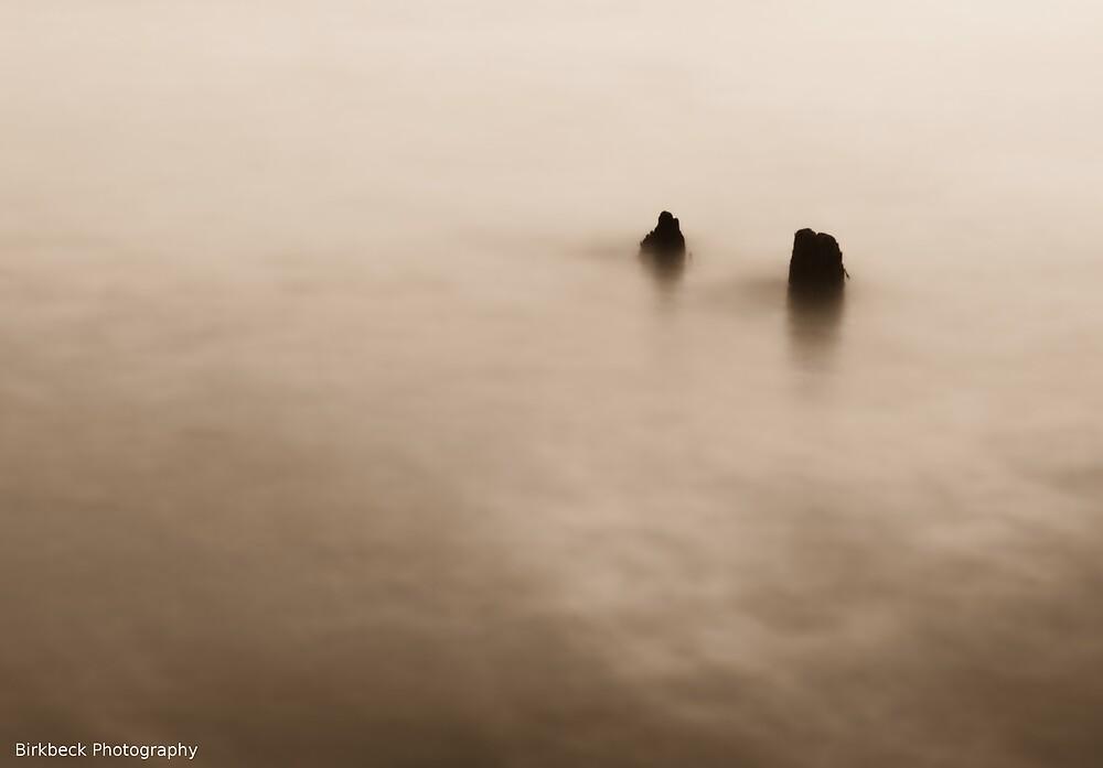 Submerged by Glen Birkbeck
