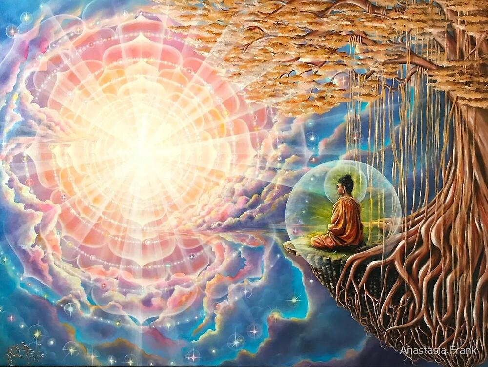 The Enlightenment von Anastasia Frank