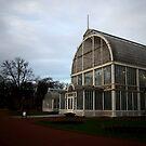 Trädgårdsföreningen's Palm House by 71featherst