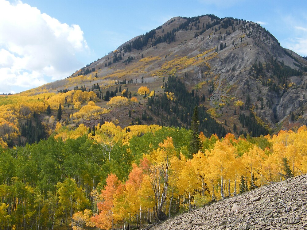 Autumn Colors in Colorado by susannamike