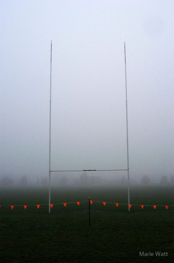 Rugby Pitch by Marie Watt