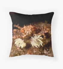 Boxer Crab Throw Pillow