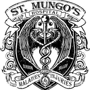 St. Mungo's Hospital by Mindspark1