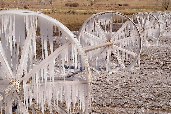 Frozen Wheels by Dan Sweeney